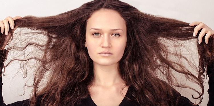 dry-damaged-hair-honey